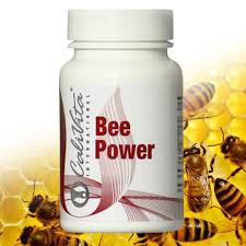 bee-power