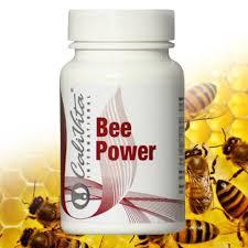 bee-power